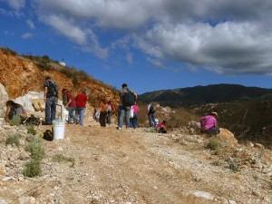 Looking for gems on the slopes above the Stewart Lithia Mine, Pala, California