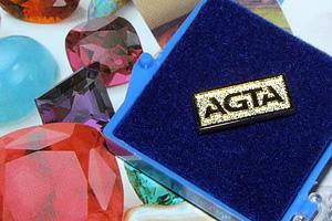 AGTA lapel pin